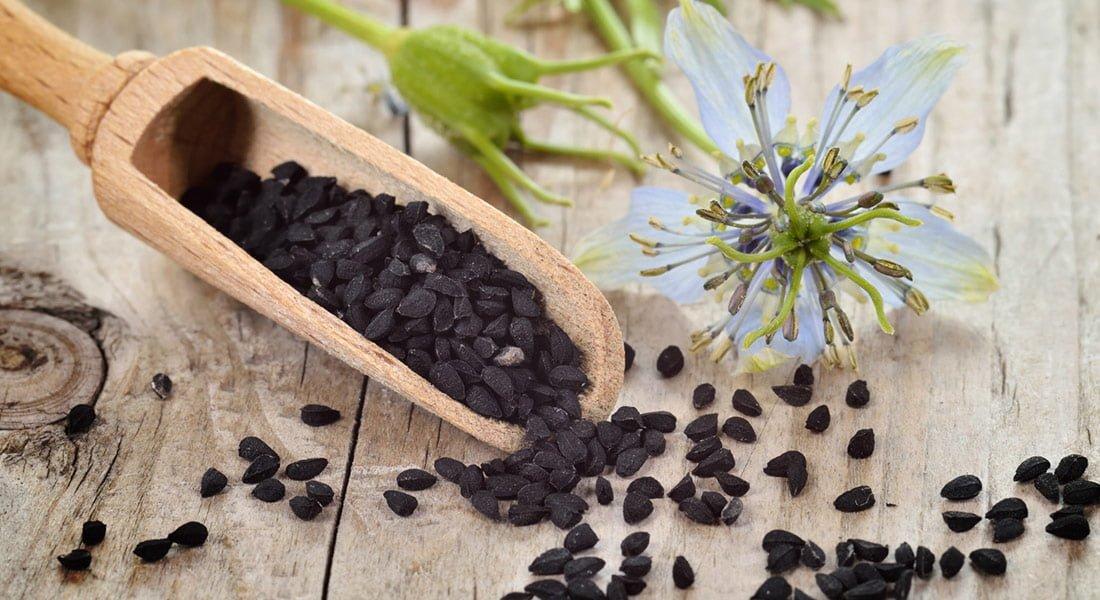 Właściwości czarnuszki - jak wpływa na organizm?
